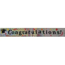 Graduation Banner (Pack of 2)
